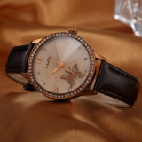 Reloj con el reloj de señoras de cuero del ODM del OEM del vidrio mineral (Wy-054)