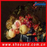 Lona impermeable del algodón de la lona de arte/el 100% (SC8010) con el mejor precio
