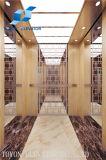 Elevador e elevador da HOME de Toyon para residencial e o passageiro