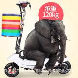 Bicicleta eléctrica de la nueva venta caliente del diseño 2017 con precio de fábrica