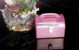 Caixa plástica do recipiente de armazenamento da alta qualidade quente da venda (Hsyy425)