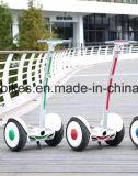 1000W elektrisches Hoverboard mit Griff