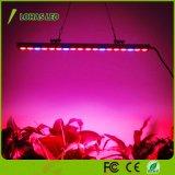 방수 108W LED는 Hydroponic 실내 플랜트 증가를 위한 빨간 파란 스펙트럼을%s 가진 표시등 막대를 증가한다