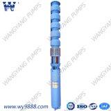 À la verticale de la pompe à eau submersibles électrique de la turbine