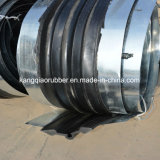 Het Gescherpte RubberEinde van het staal Waterstop/Staal/het RubberEinde van het Water met Beste Prijs