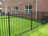 Giardino galvanizzato ornamentale di alta qualità che recinta con il prezzo competitivo