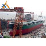 Classe de bateau de transporteur de cargaison générale à vendre