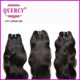 高品質の加工されていない卸売価格のバージンのクチクラによって一直線に並べられる毛