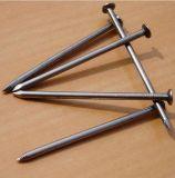 Galvanisierte normale geläufige Stahlnägel