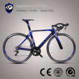 좋은 품질 비용 효과적인 Shimanotiagra 탄소 섬유 도로 자전거 속도 자전거