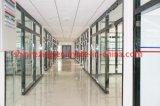 6-Chloromethyl-2-cloruro Methylpyridinium Alimentación China derivados piridina CAS 3099-30-7