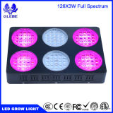 Prix ​​usine 800W Medical Plant LED Grow Light, High Power 500W LED Plant Grow Light