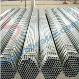 Hot Sale Stainless Steel for Tubes Tubular Heater Heating Element