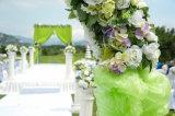 De de standaard Dekking van de Stoel van de Grootte/Sjerp van Organza van de Stoel van het Huwelijk