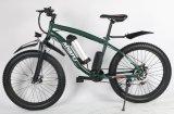 Vélo électrique 4.0tire de croiseur de plage de bâti d'alliage d'aluminium