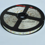Tiras flexibles de IP20 los 60LEDs/M SMD 2835 LED