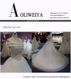 Hochzeits-Kleid mit Kristall/Rhinestones