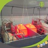 Оборудование для клети горячего DIP кровати хавроньи фермы свиньи гальванизированной порося