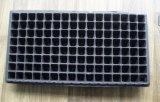 128 de Pot van de Bloem van Balck PS van cellen voor Dienblad van het Zaad van de HEUPEN van de Tuin het Zwarte