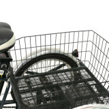 """24 """"triciclo eléctrico de la rueda grande del cargo eléctrico de la rueda 3 con la cabina en venta"""