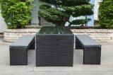 Mimbre del patio del jardín/muebles de la rota que cenan el conjunto (LN-5079)