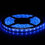 300 LEDs SMD5050青いLEDのストリップ