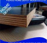 [جينغسو] [إكسوزهوو] واجه فيلم خشب رقائقيّ مع خشب صلد لب