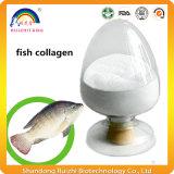يحلمأ سمكة كولاجين هضميدات مسحوق