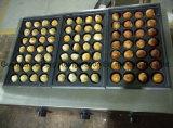 Edelstahl kommerzielles automatisches Fishball, das Bäcker-Gas Takoyaki Maschine kocht