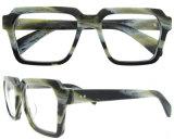 Vidrios ópticos del último nuevo del espectáculo marco con estilo de las lentes