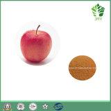 Мощные антиоксидантных Apple извлечения Polyphenols 50% ~ 80%