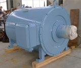 2.5MW baixo - gerador de ímã permanente da velocidade