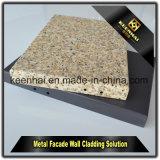Marbleizing алюминиевый фасад обшивает панелями алюминиевое цену плакирования