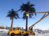 Украшения пользы поставкы фабрики пальмы даты завода крытого напольного искусственние