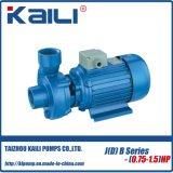 Selbstansaugende Pumpe (JDB, JB Serien-Mischer-Pumpe)