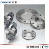 Flange de Orifício de aço inoxidável DIN (F304, F310, F316)
