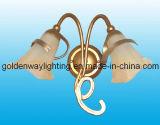 Настенный светильник (CE, RoHS)