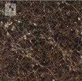 O mármore do assoalho vitrificou telhas Polished, telhas lustradas vitrificadas de 800X800mm cor profunda, telhas lustradas vitrificadas hotel