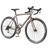 Велосипед гонки Bike спорта скорости 700c новой модели 21 (FP-RB-S01)
