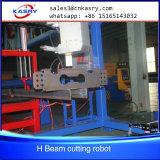 de Het hoofd biedende Robot van de Straal van 1200mm, Lijn van de Boor van de Straal van het Plasma de Scherpe voor Structureel Staal
