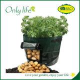 Onlylife pp. wächst haltbares aufbereitenanschluss-Gemüse Beutel