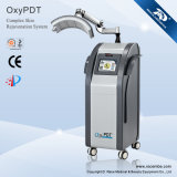 Nueva máquina de la belleza de la terapia de oxígeno puro PDT para todo el cuidado de piel (OxxyPDT (II))