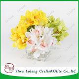 6PCS kunstmatige Bloem Cymbidium voor de Orchidee van de Zijde van de Bloem van Hybridum van de Binnenhuisarchitectuur