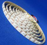 7.2m/W mini striscia decorativa 5050 degli indicatori luminosi 5m LED una striscia di 30 LEDs/M LED RGB