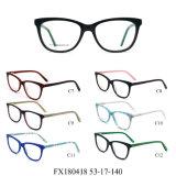 Klaar Populaire Voorraad en Oogglazen Eyewear van de Frames van Nice Eyewear de Optische (FX180418)