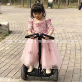 Großhandelsbillig 2 Rad-Stoß-Roller für Erwachsenen