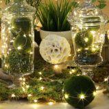 2 m de fio de cobre de LED 20 Fairy Garland LED da lâmpada de luzes de String de casamento de Natal Decoração de Festas em casa