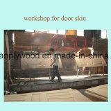 HDF molde puerta piel con tipos de chapa