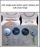 Schnelle Freigabe-Quadrat-gesundheitlicher Toiletten-Sitzdeckel