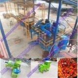 1-5T/H Professional Fabricant type humide de l'huile de palme de la machine à double vis